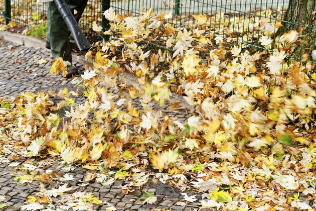 clearing of pavement from autumn leaves