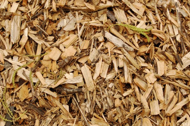 Mulch close-up