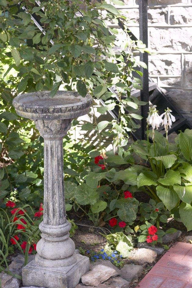 Birdbath in a garden