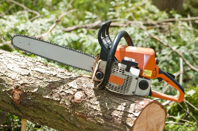 Chainsaw on fallen tree