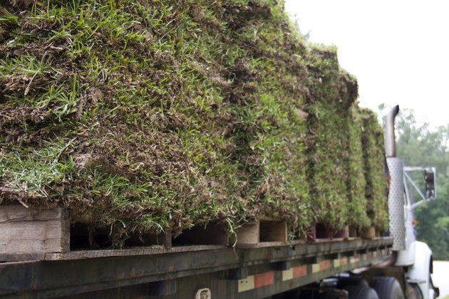 Pallets of Sod Grass on a Truck