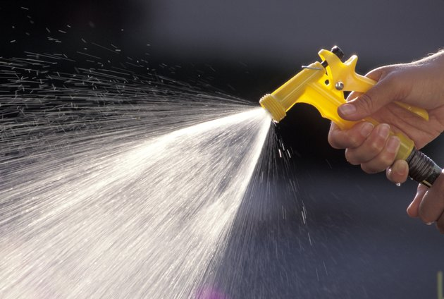 Spraying a Garden Hose