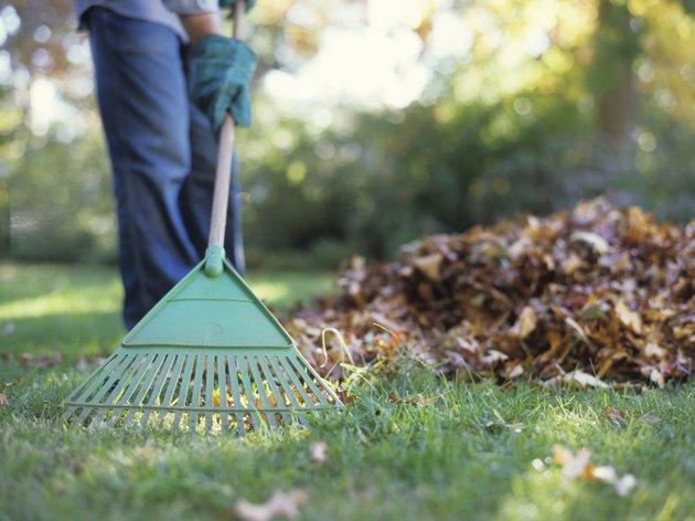 Person raking leaves in garden, low section