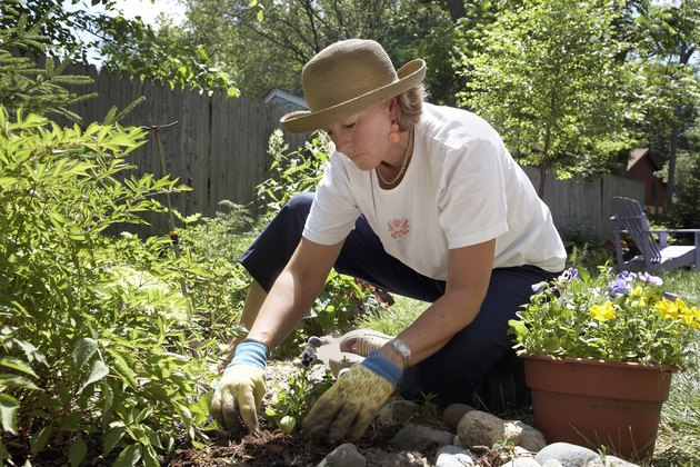 Close-up of a mature woman gardening
