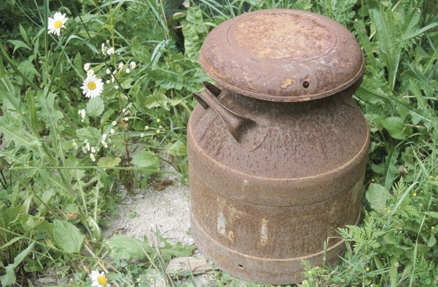 Antique milking can