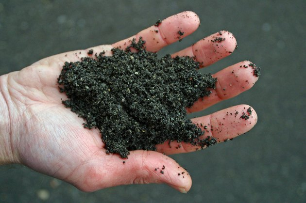 A hand holding black volcanic soil.