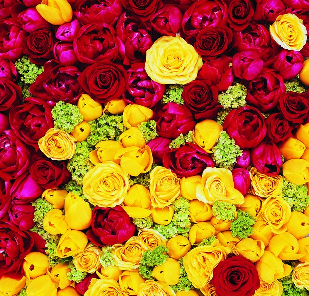 Flowers That Symbolize Strength