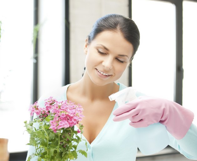 woman holding pot with flower and spray bottle