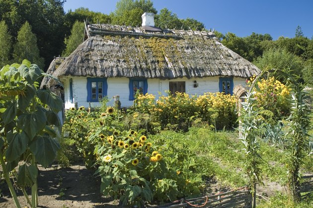 Wooden cottage house and a garden