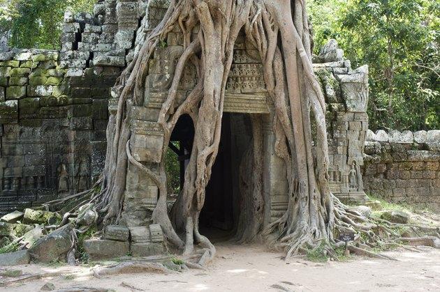 Ta Som Temple - Cambodia