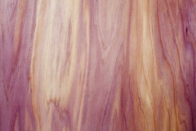 Western Red Cedar Texture