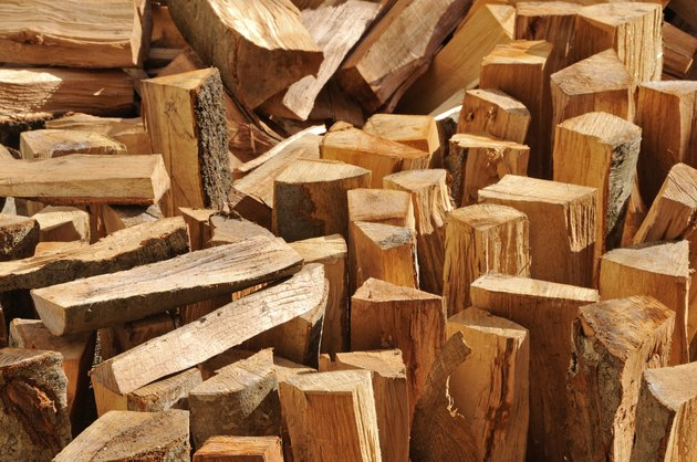 What Is Punk Wood?