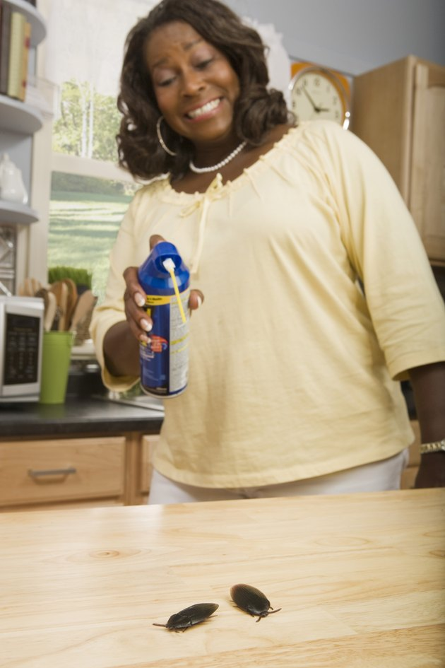 Woman spraying pesticide on cockroaches in kitchen