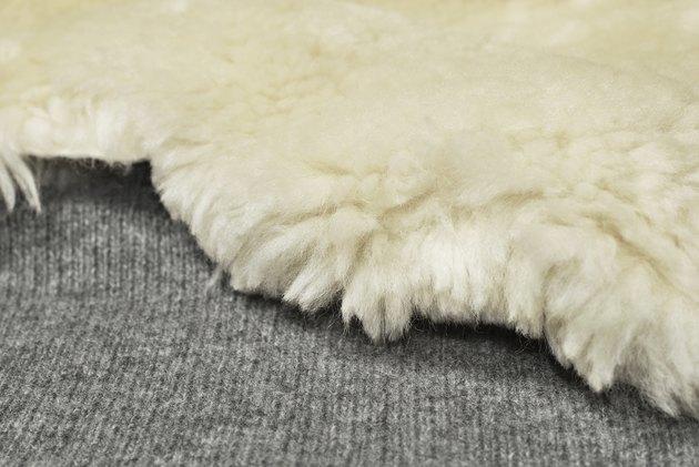 Sheep fur over wool texture