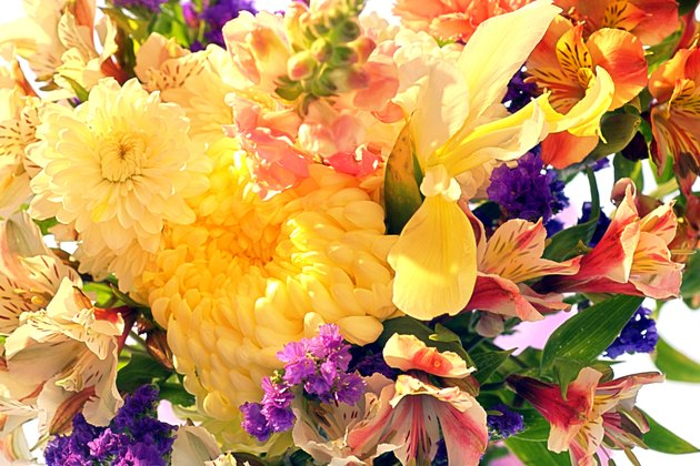 Close-up of spring bouquet of flowers