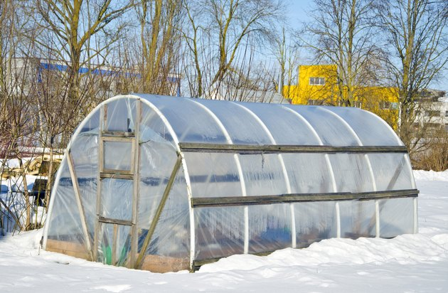 handmade polythene greenhouse for vegetable  in winter  on snow