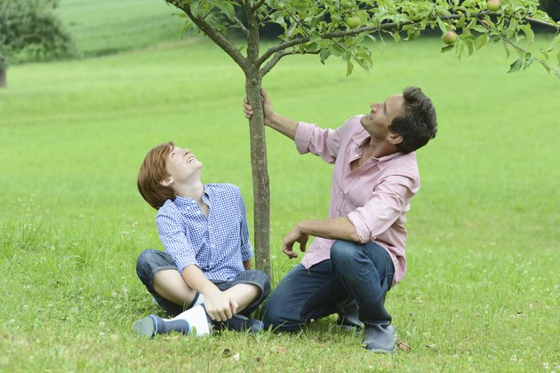 Man and boy holding tree in garden