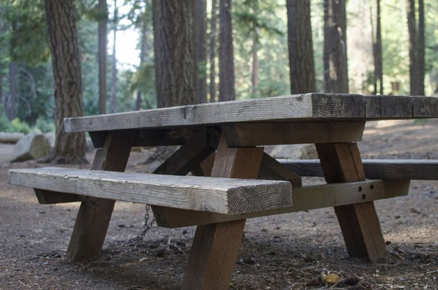 Picnic table in woded park setting