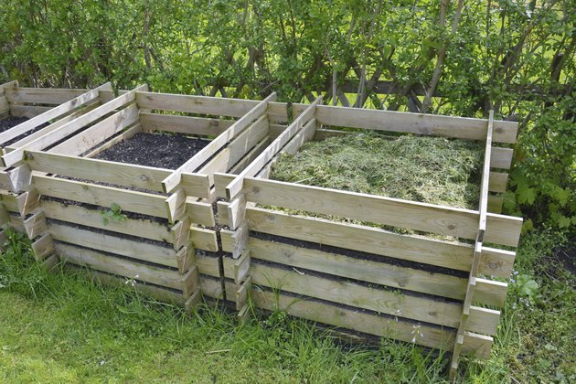 compost in the garden