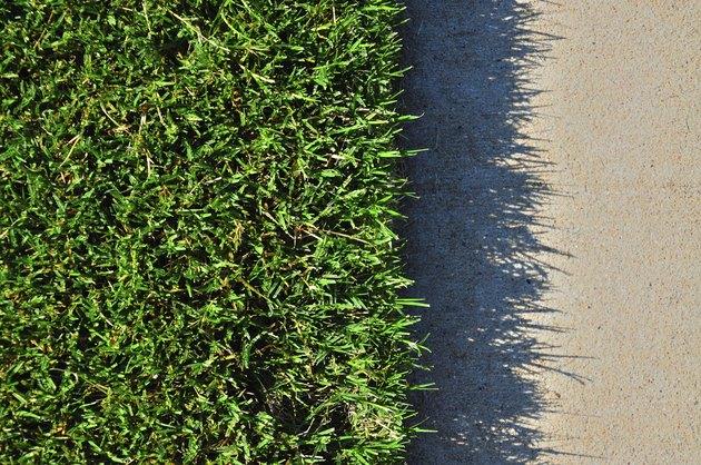 Grass and Concrete