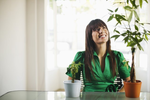 Smiling businesswoman at desk with plants