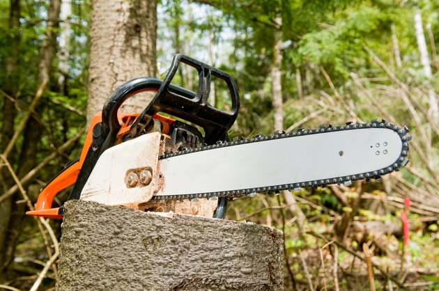 Chainsaw on tree stump
