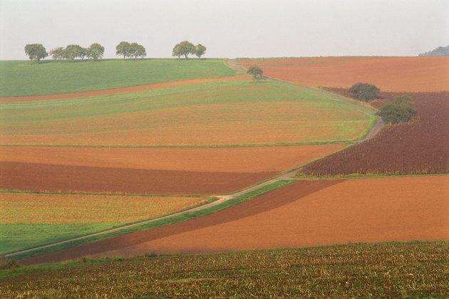 Farmland in autumn