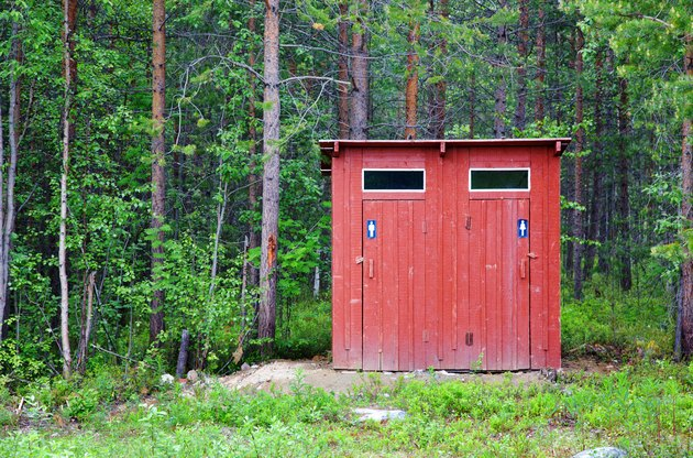 Toilet in a wood