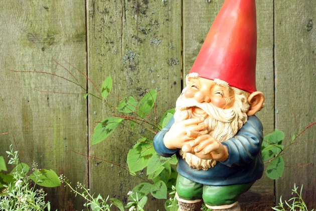 Garden Gnome Laughing