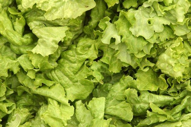 Lettuce texture