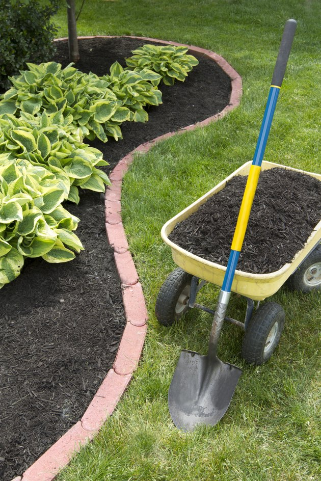 Mulch Bed With Edging