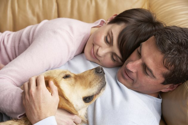 Portrait Of Couple Relaxing On Sofa With Pet Dog
