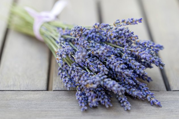fresh lavender bouquet