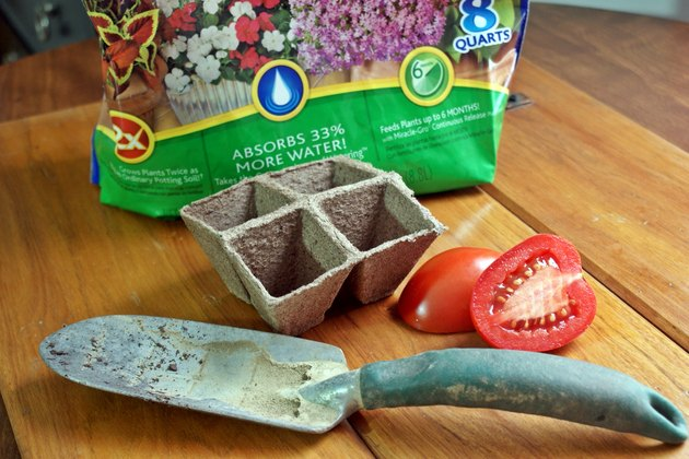 How to Grow Tomatoes From Fresh Tomato Seeds