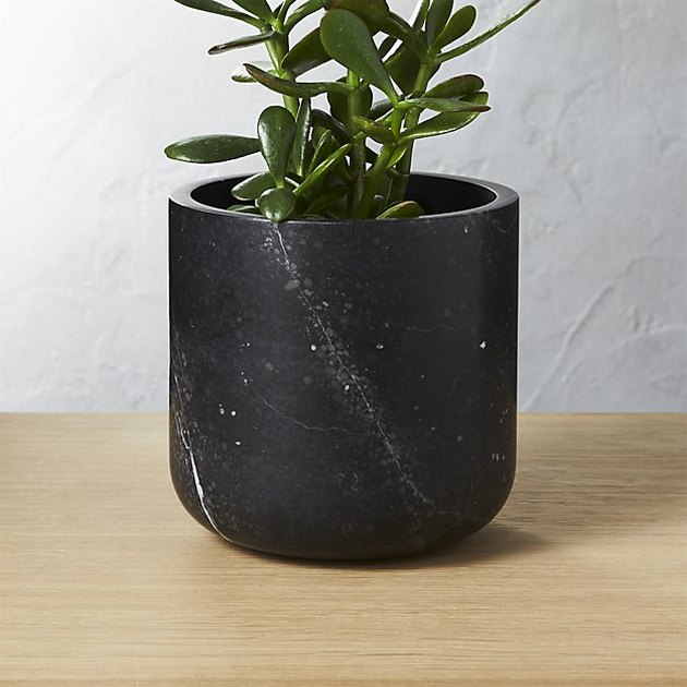 Cylinder black marble planter with tiny white specks