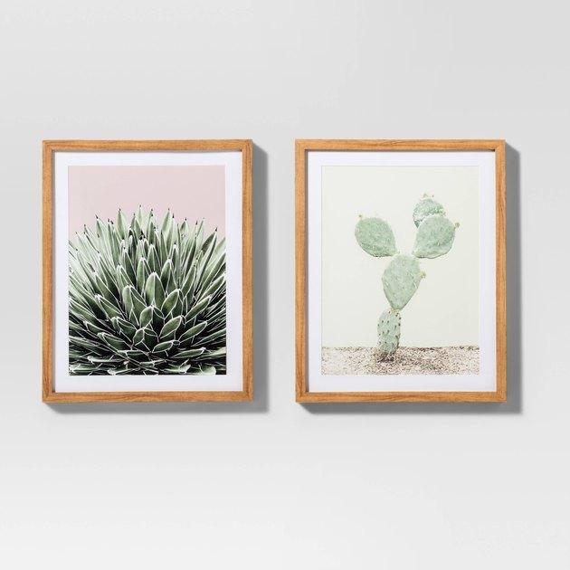 cactus wall prints