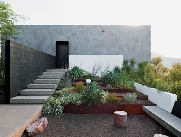 desert plants to use when landscaping wendell burnett architects private burnett house