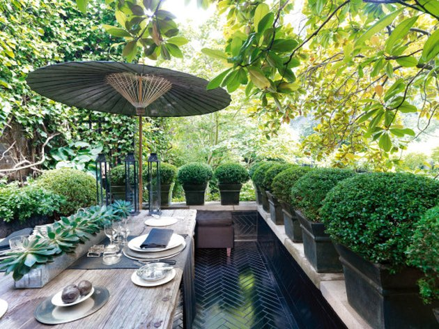 garden dining area with potted topiaries