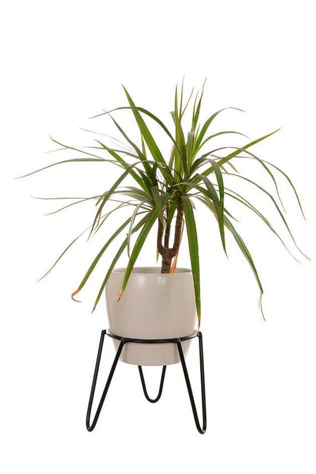 White mid-century planter with hairpin legs
