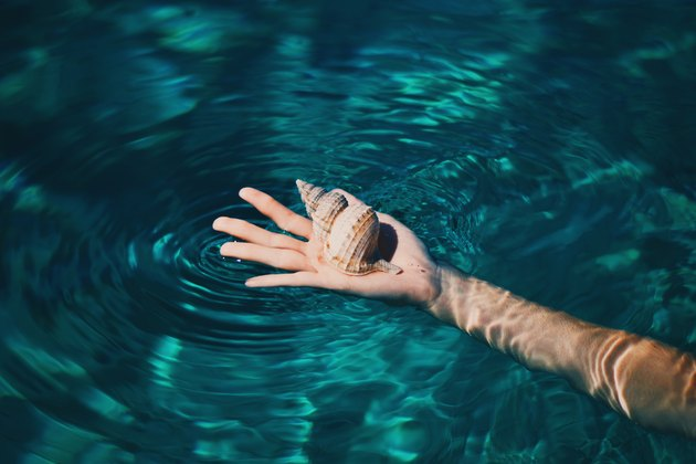 Holding seashells in clear pool water.
