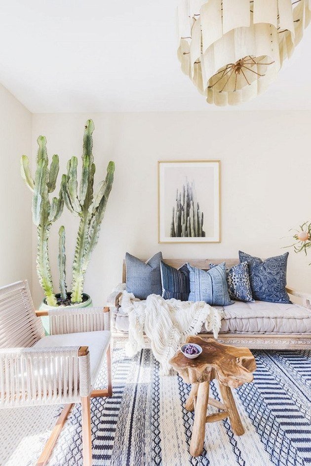 cactus living room