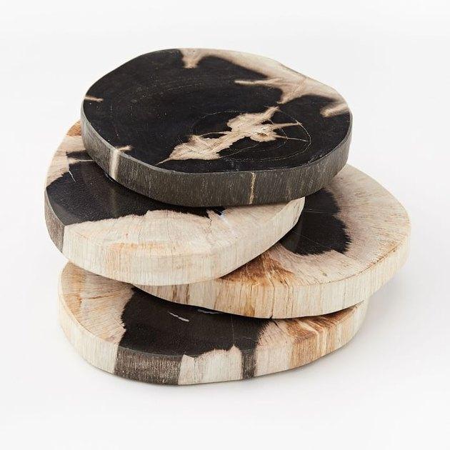 Petrified Wood Coasters