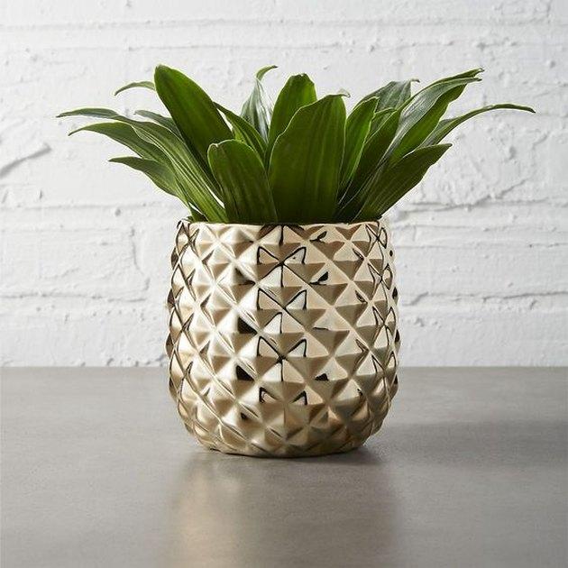 Gold Pineapple Planter