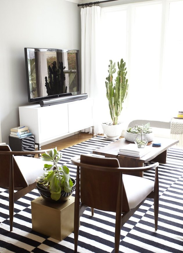black and white striped rug in modern apartment living room