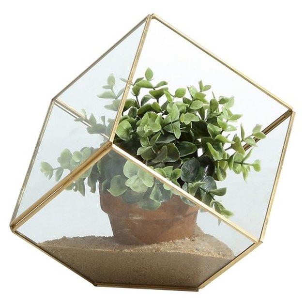 Cube Brass and Glass Terrarium