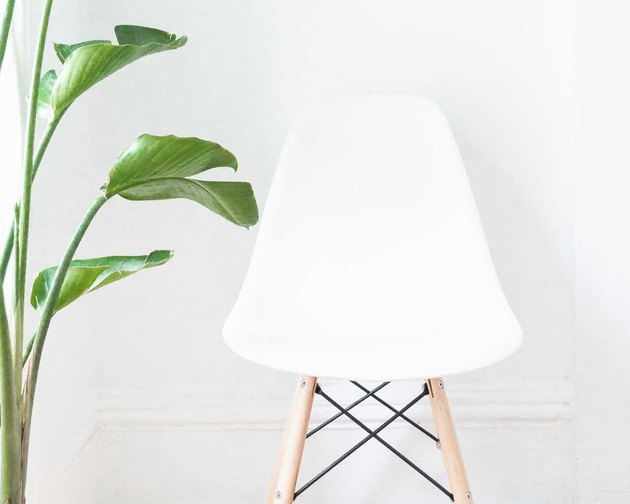 A white shell chair with wooden legs next to a leafy plant.