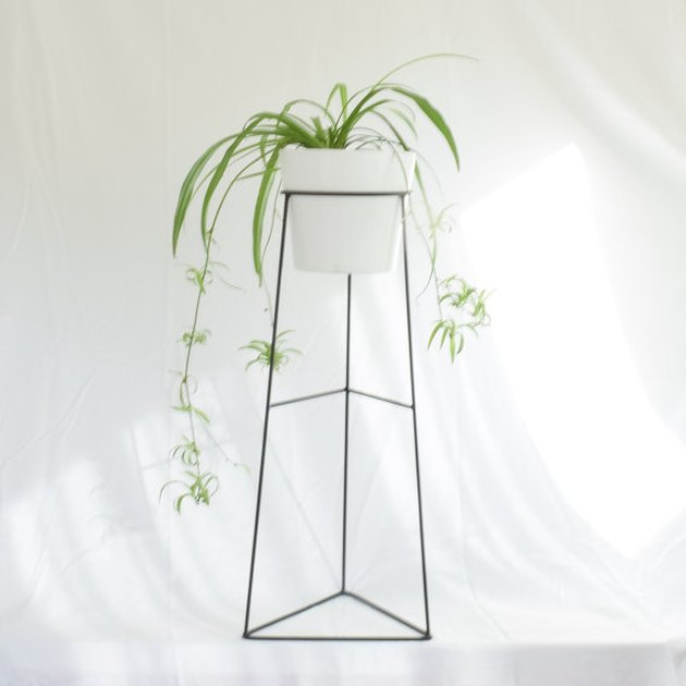 Tall wire planter with white ceramic pot