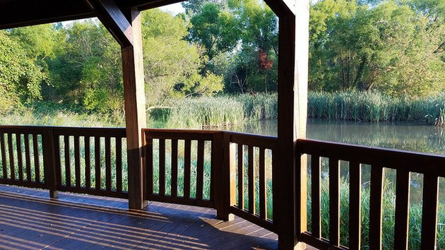Wood deck overlooking scenic pond.