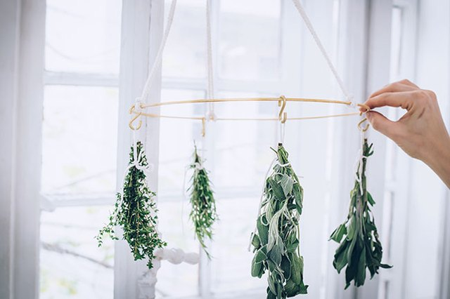 This DIY Kitchen Tool Is What You Need to Naturally Dry Herbs   Hunker