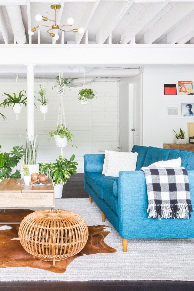 hanging plants in living room